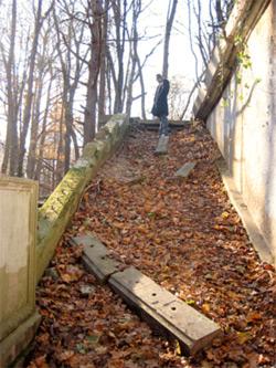King Zogs Castle - Muttontown Preserve